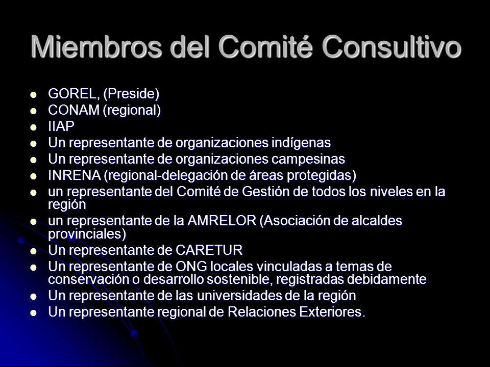 Miembros del Comité Consultivo