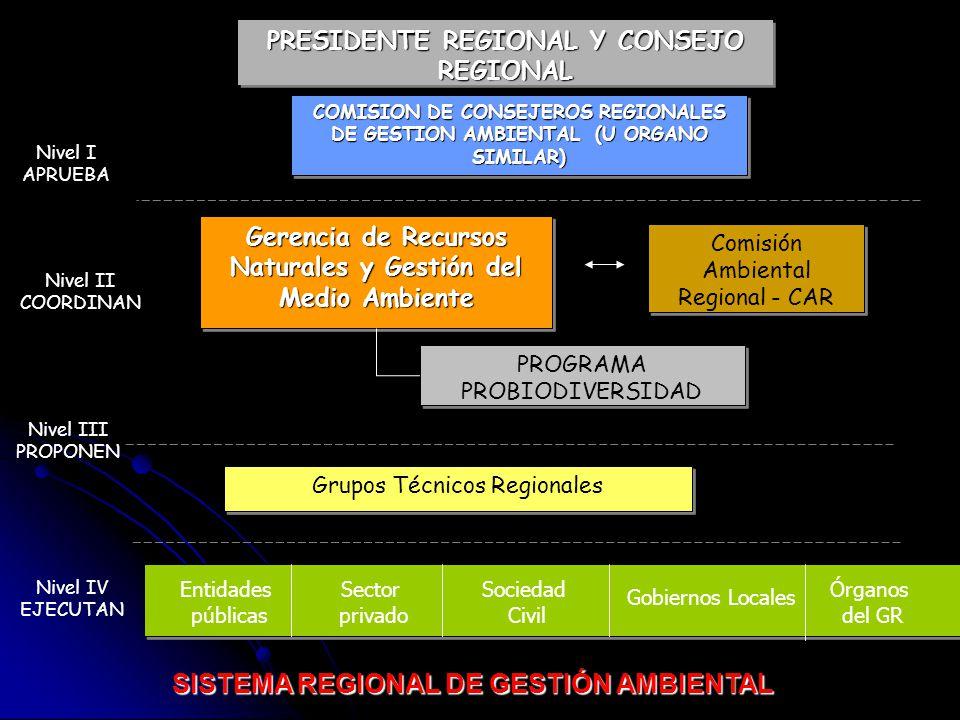 SISTEMA REGIONAL DE GESTIÓN AMBIENTAL