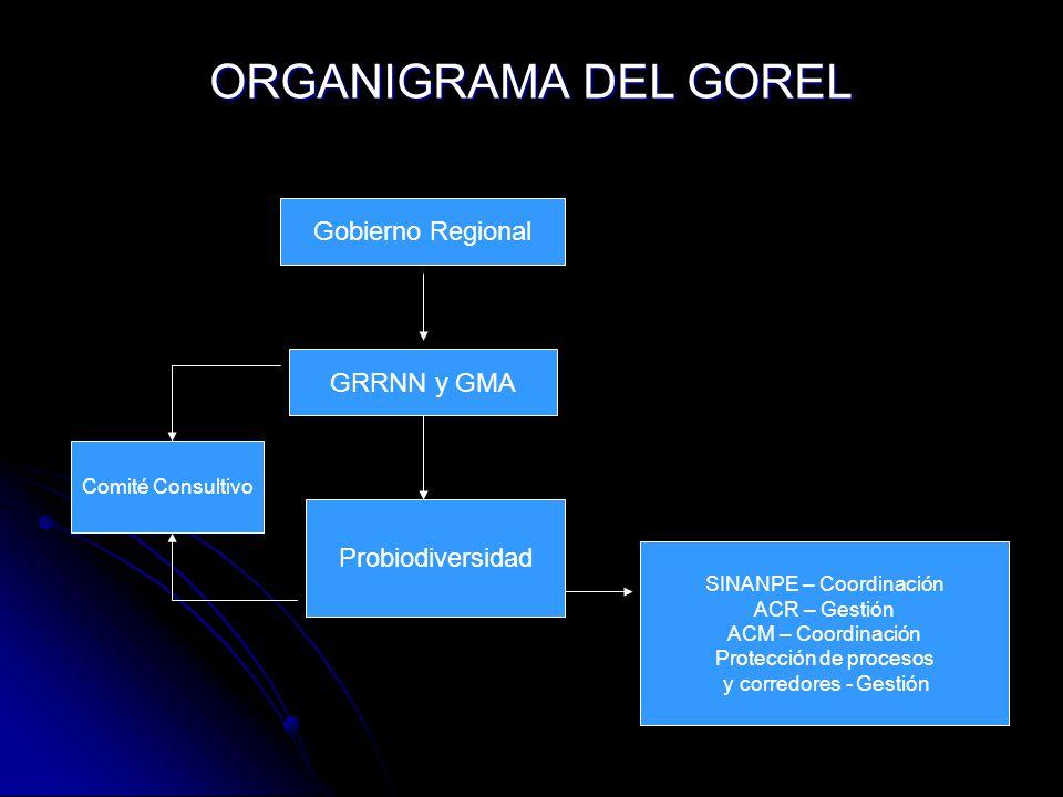 ORGANIGRAMA DEL GOREL Gobierno Regional GRRNN y GMA Probiodiversidad