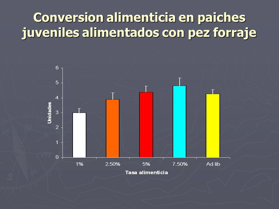 Conversion alimenticia en paiches juveniles alimentados con pez forraje