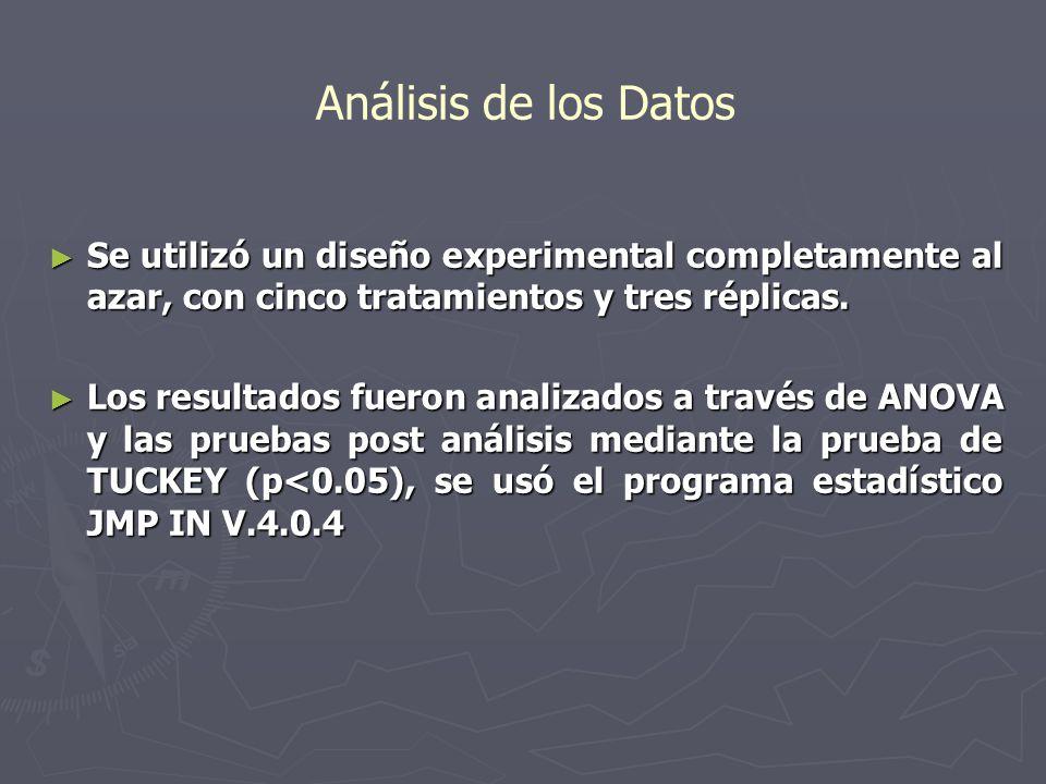 Análisis de los Datos Se utilizó un diseño experimental completamente al azar, con cinco tratamientos y tres réplicas.