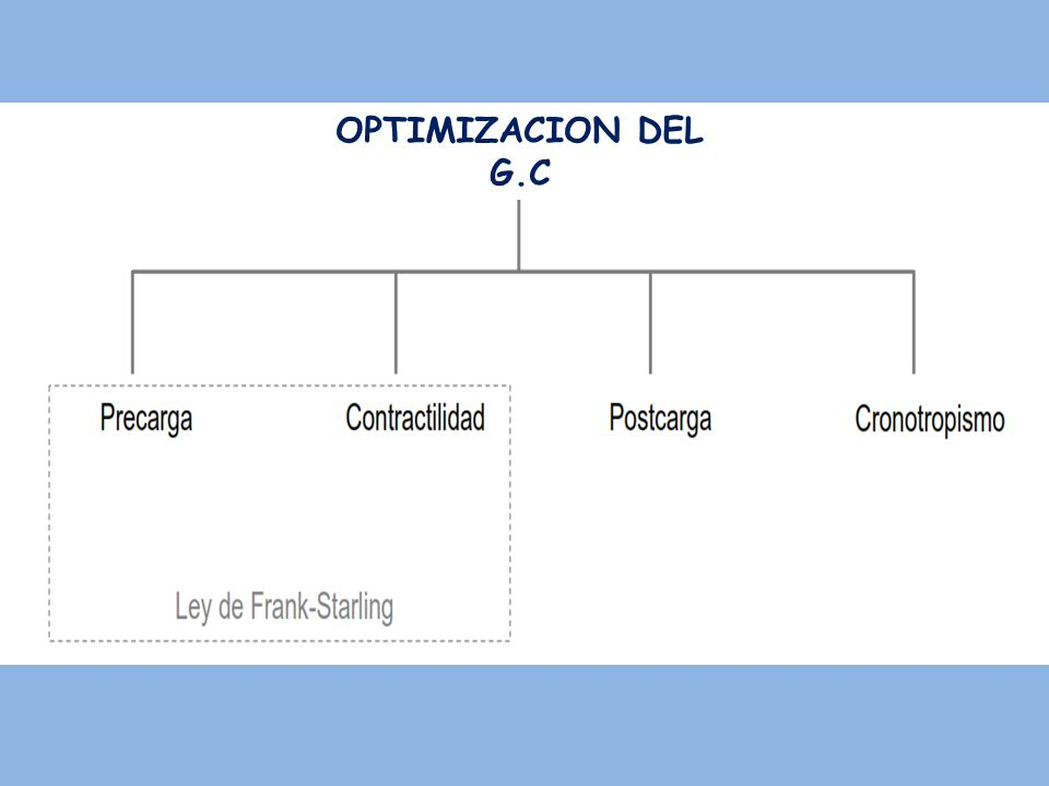 OPTIMIZACION DEL G.C