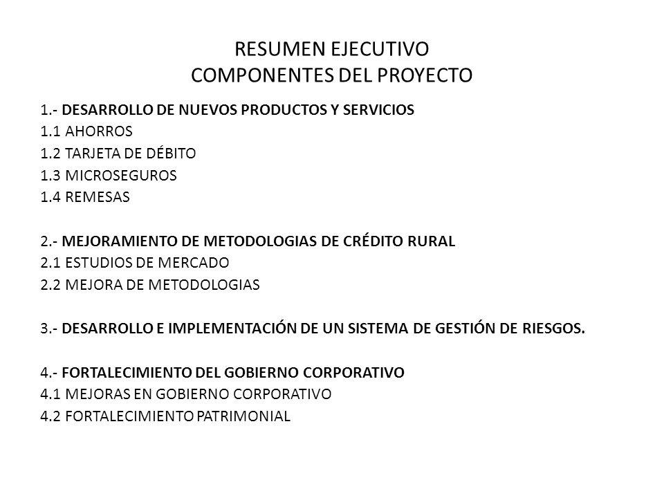 RESUMEN EJECUTIVO COMPONENTES DEL PROYECTO
