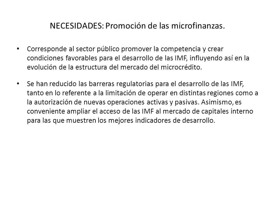 NECESIDADES: Promoción de las microfinanzas.