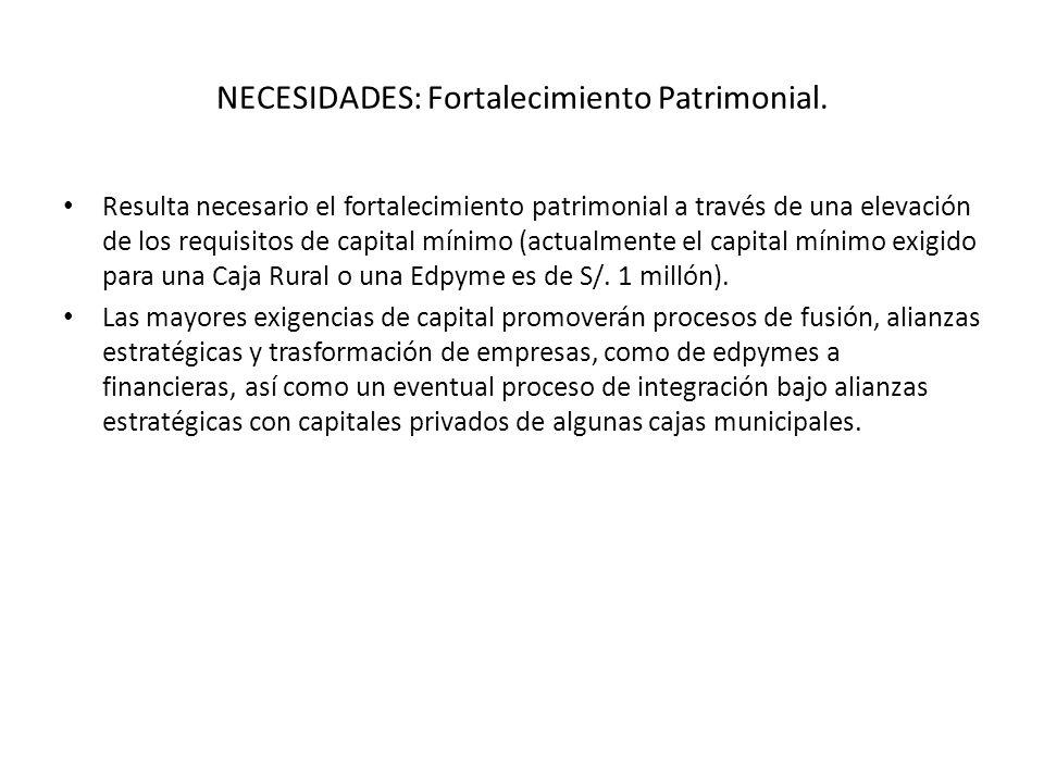 NECESIDADES: Fortalecimiento Patrimonial.