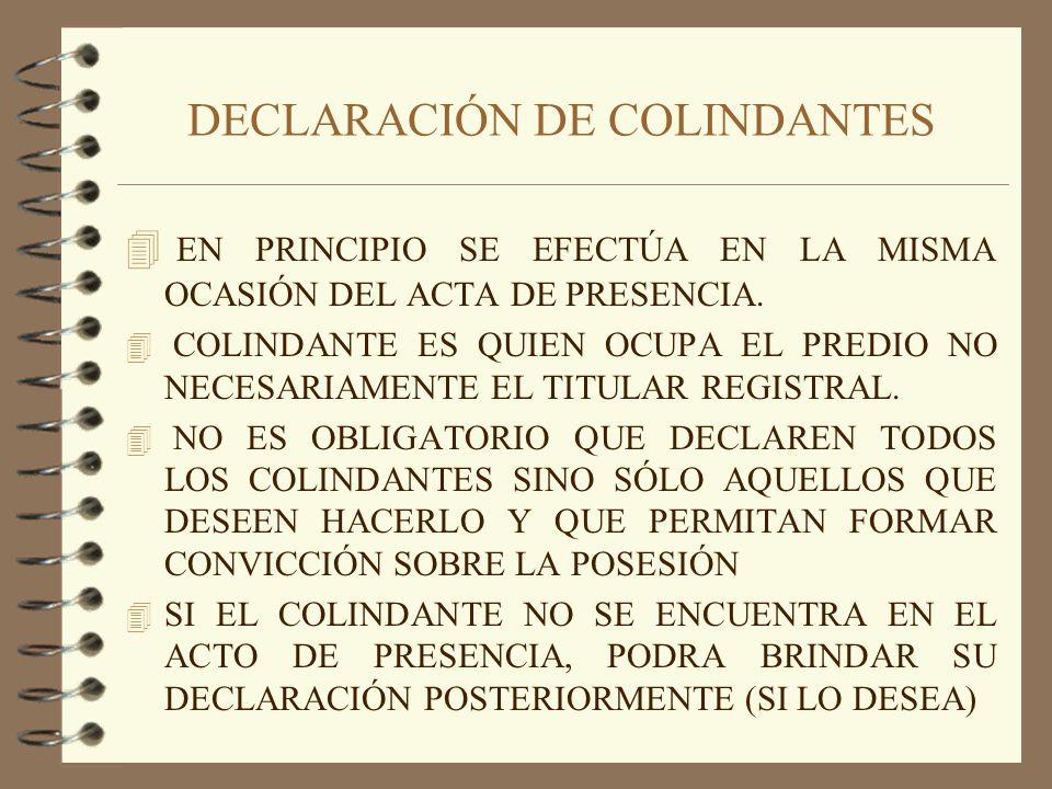 DECLARACIÓN DE COLINDANTES