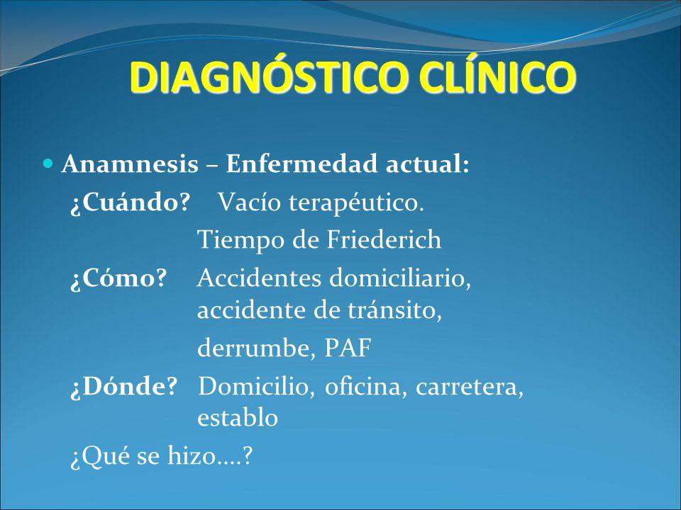 DIAGNÓSTICO CLÍNICO Anamnesis – Enfermedad actual: