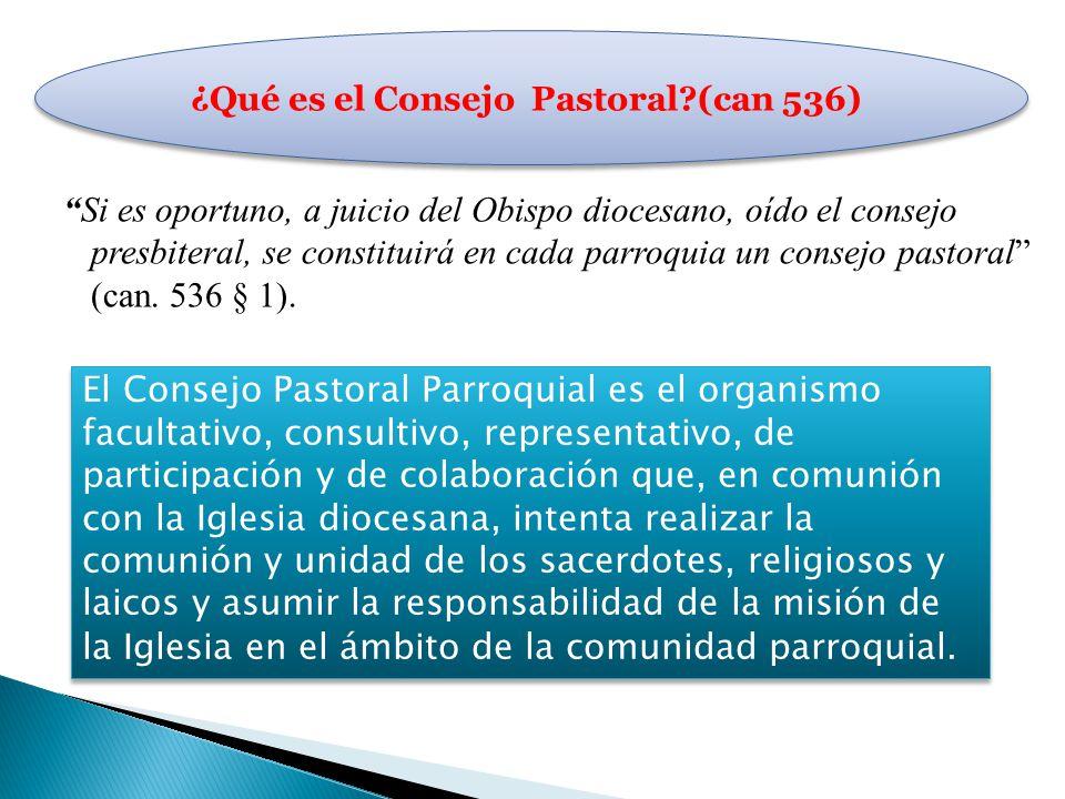 ¿Qué es el Consejo Pastoral (can 536)