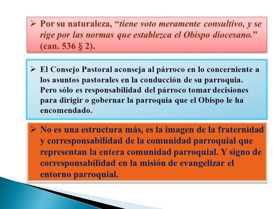 Por su naturaleza, tiene voto meramente consultivo, y se rige por las normas que establezca el Obispo diocesano. (can. 536 § 2).