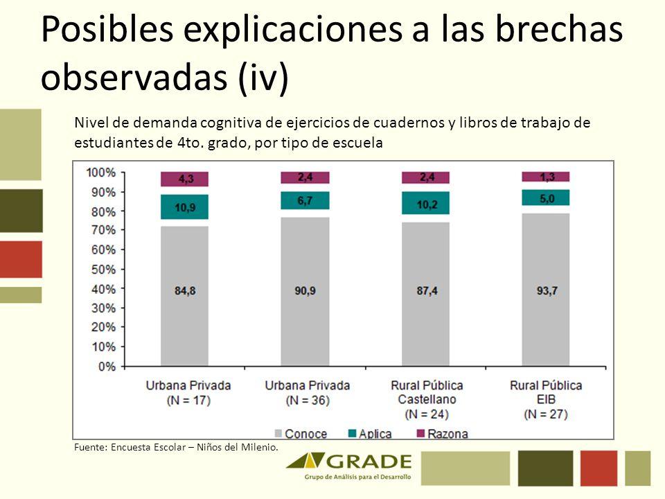 Posibles explicaciones a las brechas observadas (iv)