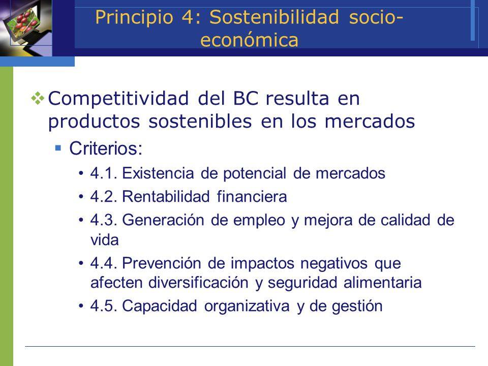 Principio 4: Sostenibilidad socio-económica