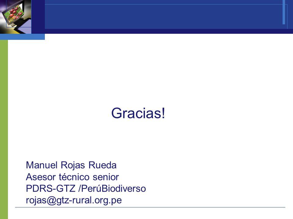 ¡Gracias! Manuel Rojas Rueda Asesor técnico senior