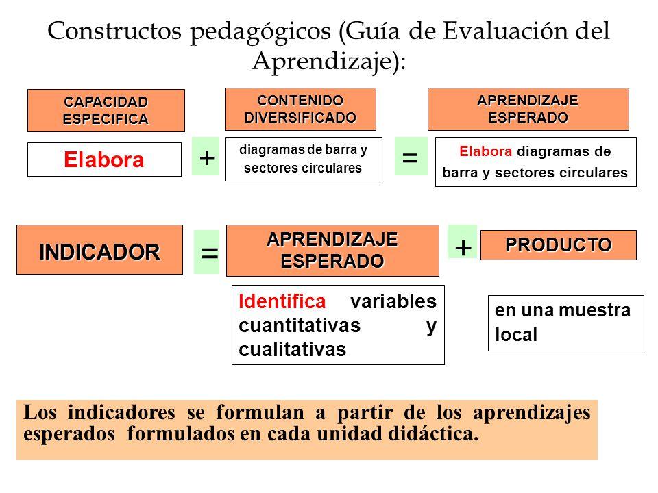 Constructos pedagógicos (Guía de Evaluación del Aprendizaje):