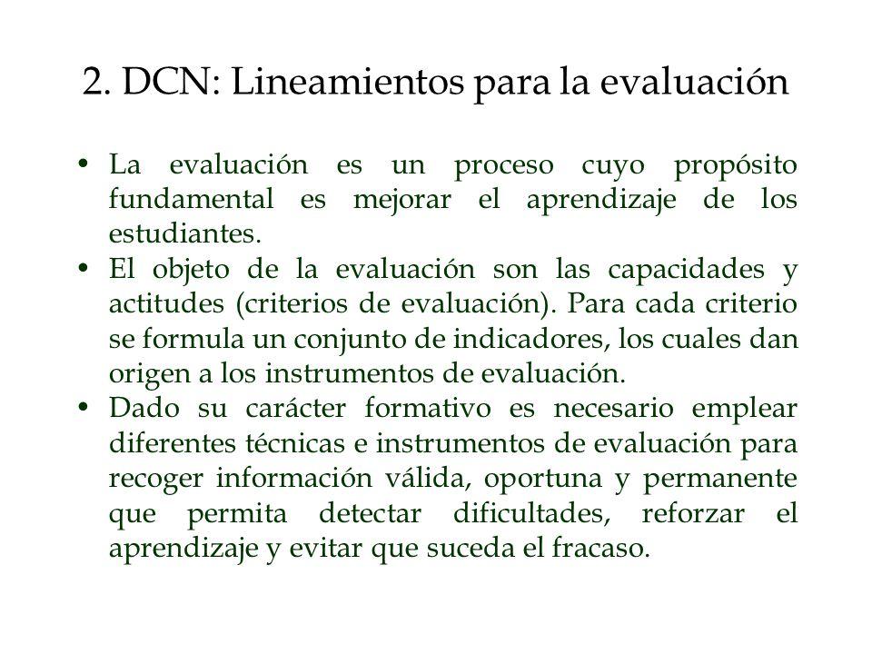 2. DCN: Lineamientos para la evaluación