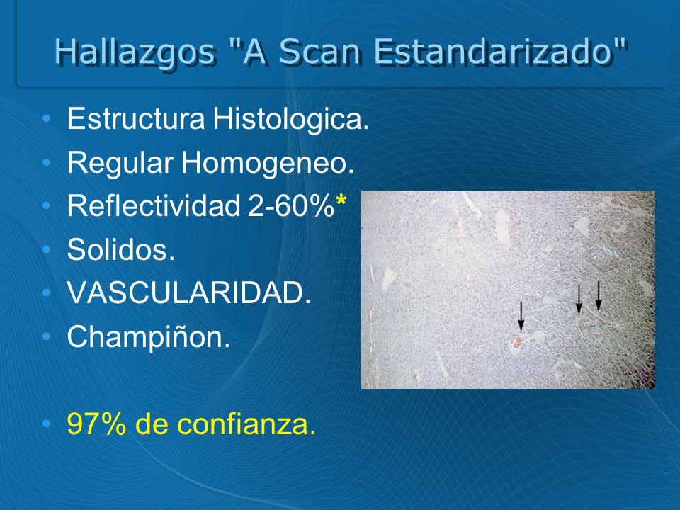 Hallazgos A Scan Estandarizado