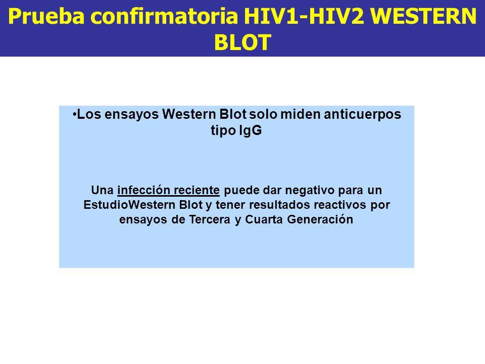 Prueba confirmatoria HIV1-HIV2 WESTERN BLOT