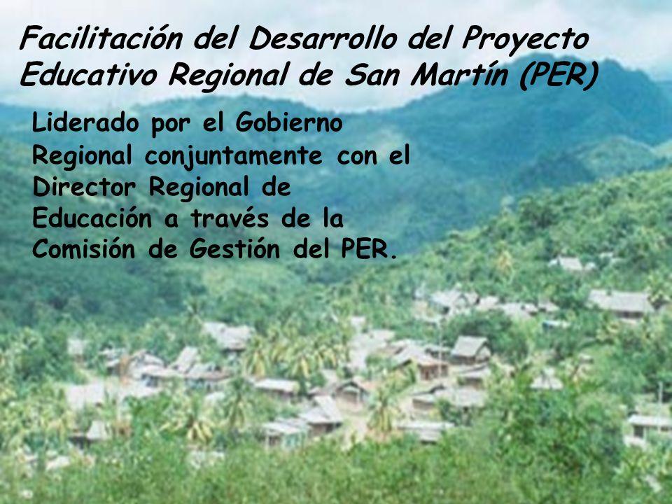 Facilitación del Desarrollo del Proyecto Educativo Regional de San Martín (PER)