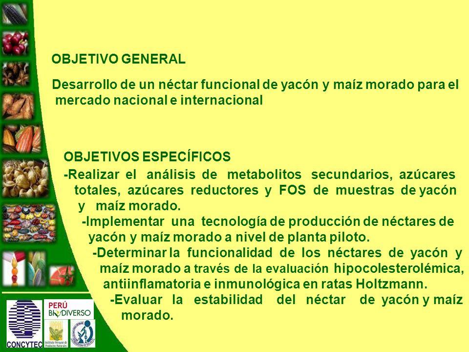 OBJETIVO GENERAL Desarrollo de un néctar funcional de yacón y maíz morado para el mercado nacional e internacional.