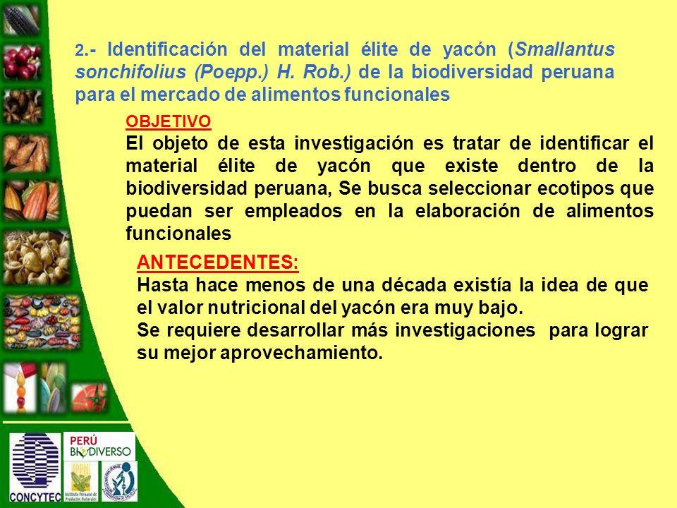 2.- Identificación del material élite de yacón (Smallantus sonchifolius (Poepp.) H. Rob.) de la biodiversidad peruana para el mercado de alimentos funcionales