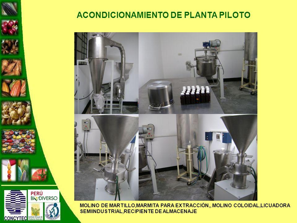 ACONDICIONAMIENTO DE PLANTA PILOTO