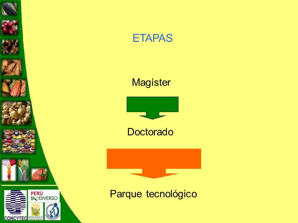 ETAPAS Magíster Doctorado Parque tecnológico