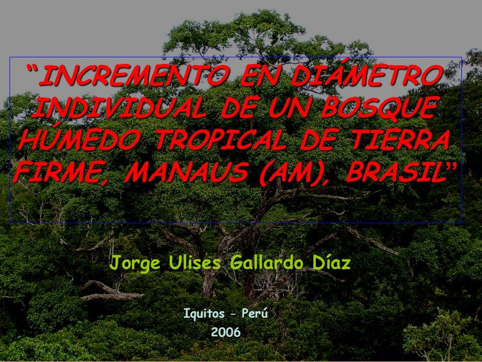 INCREMENTO EN DIÁMETRO INDIVIDUAL DE UN BOSQUE HÚMEDO TROPICAL DE TIERRA FIRME, MANAUS (AM), BRASIL