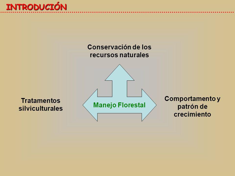INTRODUCIÓN Conservación de los recursos naturales Manejo Florestal