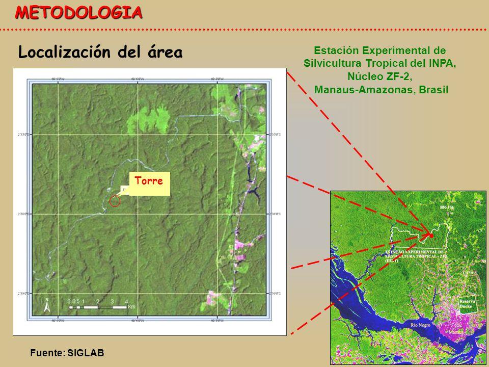 METODOLOGIA Localización del área