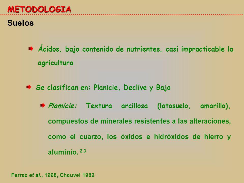 METODOLOGIA Suelos. Ácidos, bajo contenido de nutrientes, casi impracticable la agricultura. Se clasifican en: Planicie, Declive y Bajo.