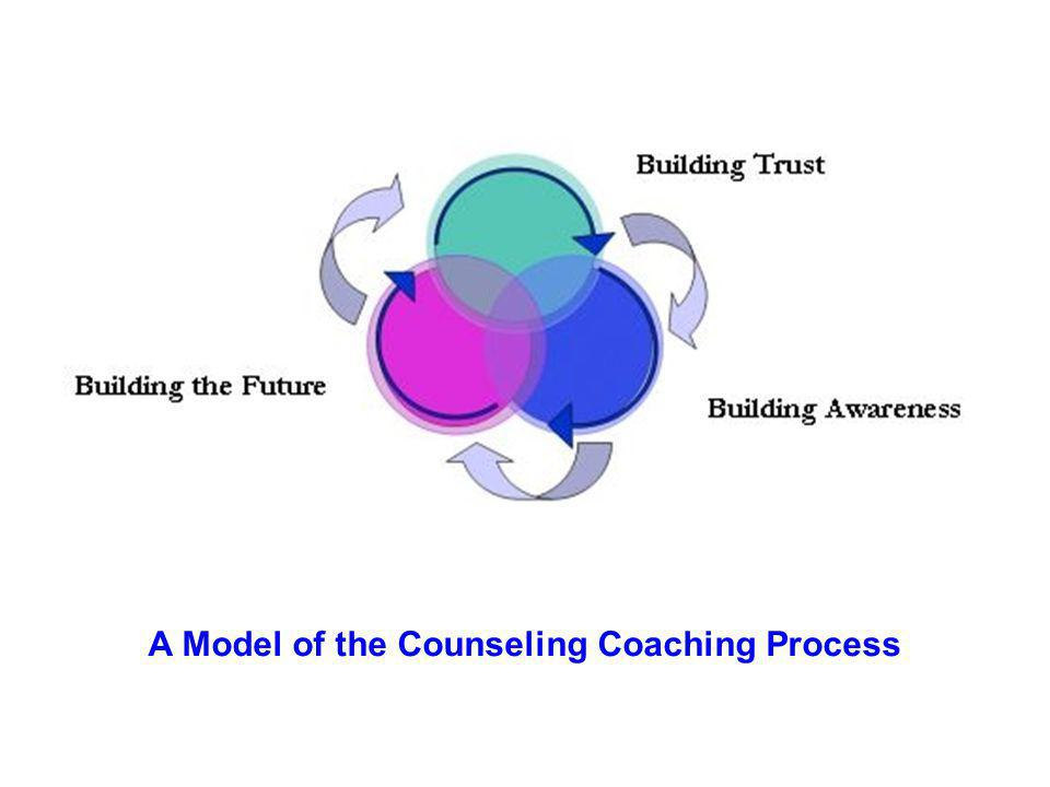 A Model of the Counseling Coaching Process