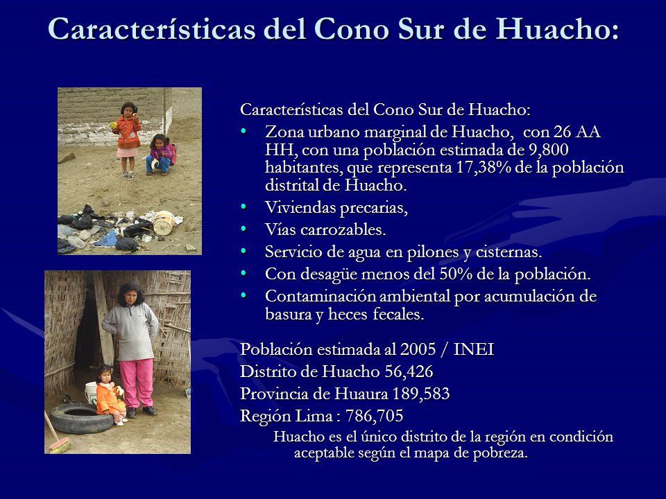 Características del Cono Sur de Huacho: