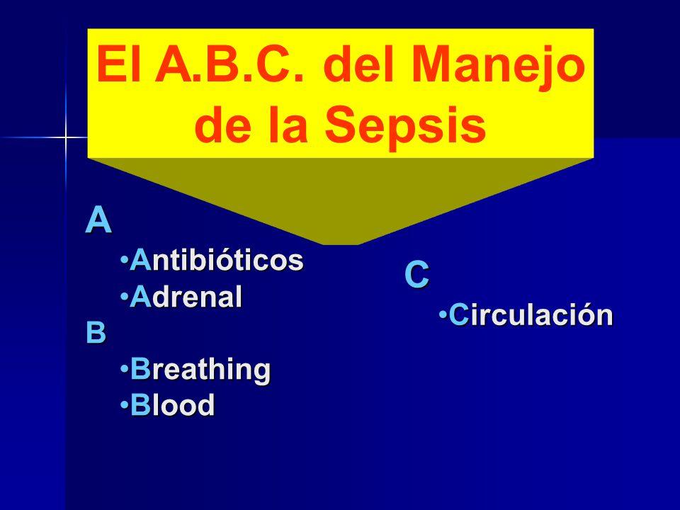 El A.B.C. del Manejo de la Sepsis