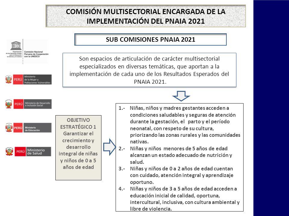 COMISIÓN MULTISECTORIAL ENCARGADA DE LA IMPLEMENTACIÓN DEL PNAIA 2021