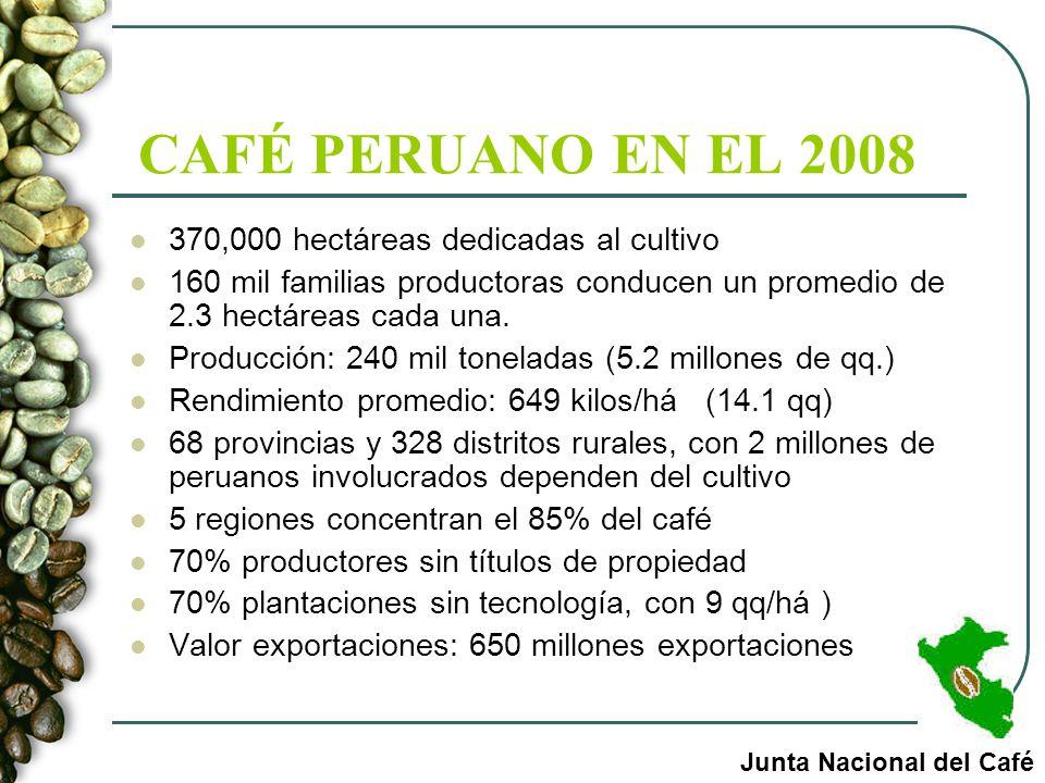 CAFÉ PERUANO EN EL 2008 370,000 hectáreas dedicadas al cultivo