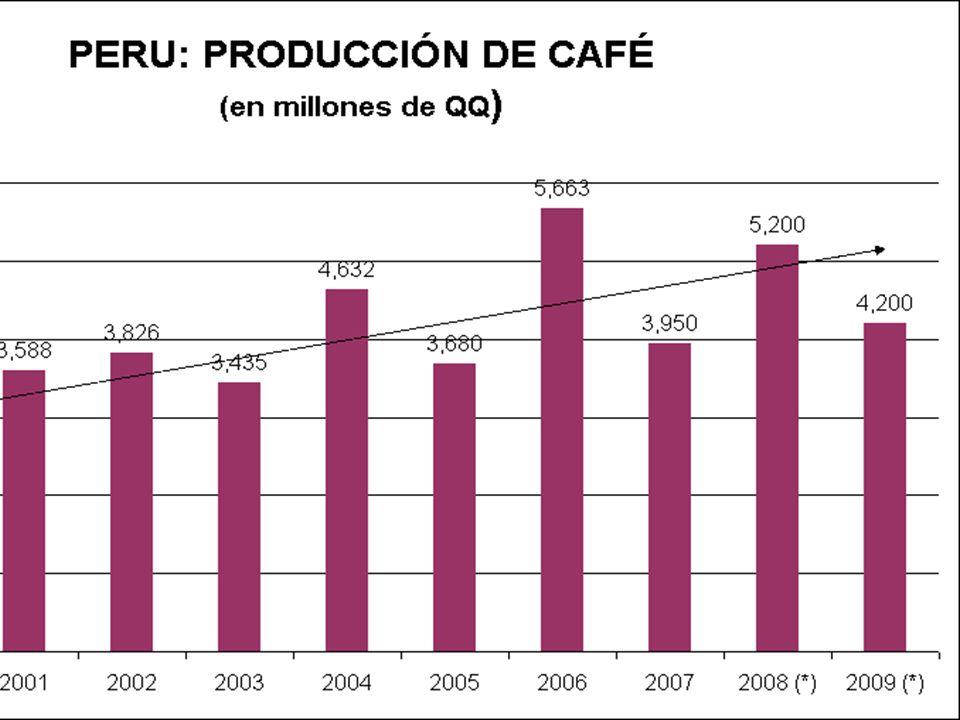 . Junta Nacional del Café Producción 2000 3,371 2001 3,588 2002 3,826
