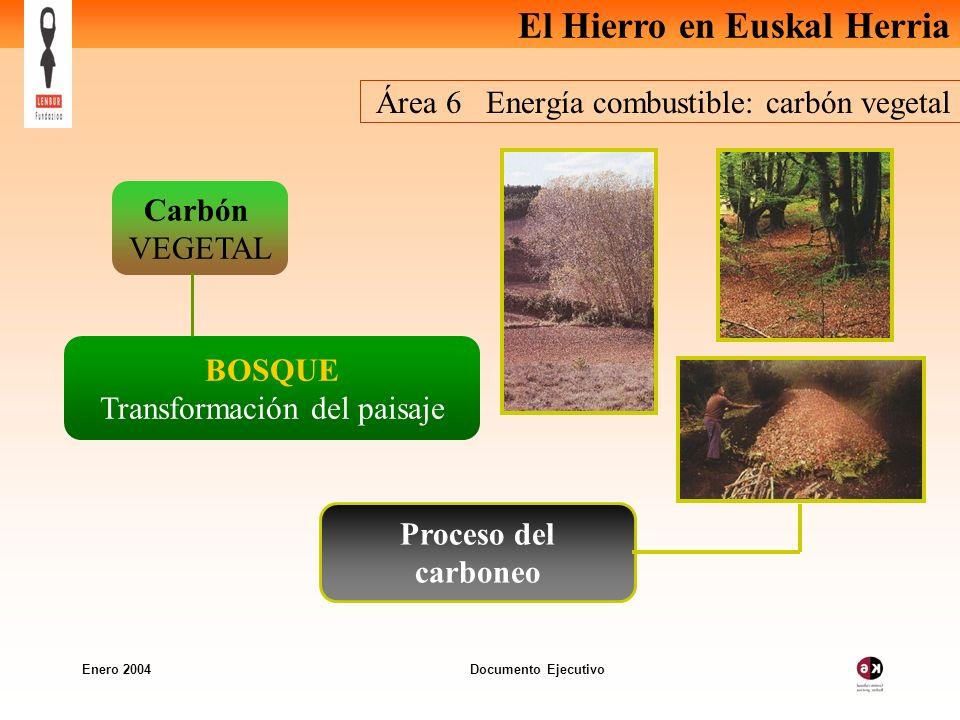 Área 6 Energía combustible: carbón vegetal