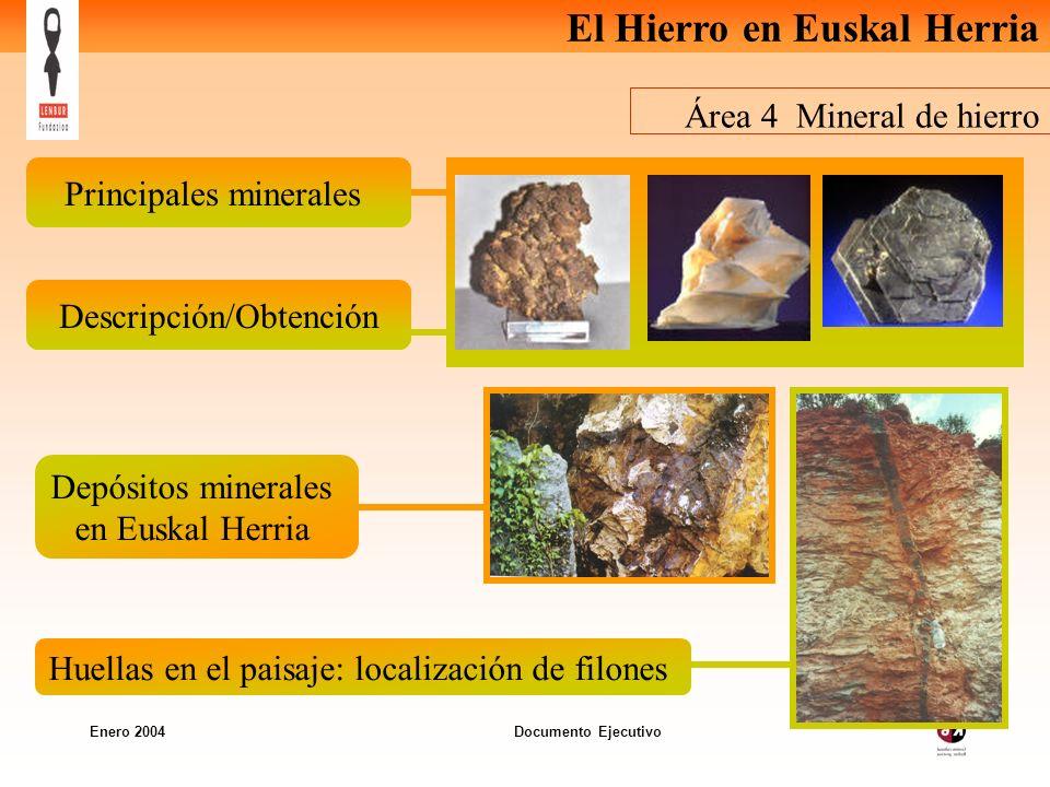 Principales minerales