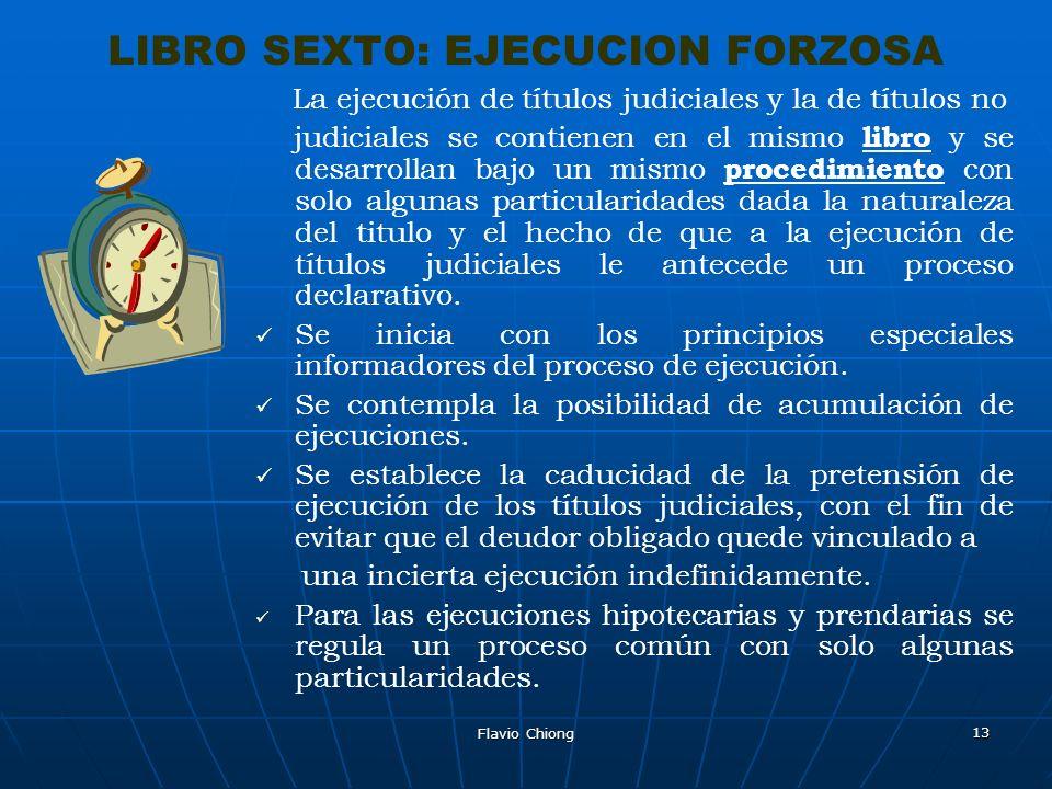 LIBRO SEXTO: EJECUCION FORZOSA