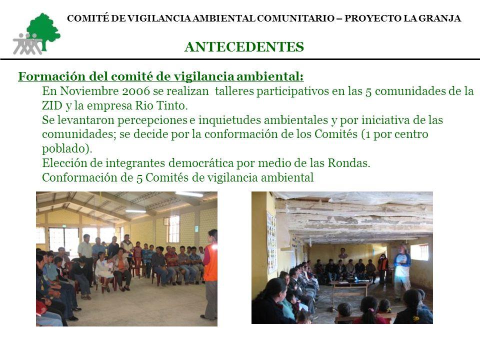 ANTECEDENTES Formación del comité de vigilancia ambiental: