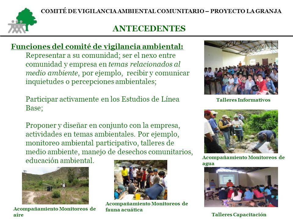 ANTECEDENTES Funciones del comité de vigilancia ambiental:
