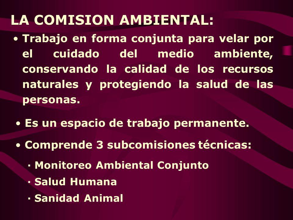 LA COMISION AMBIENTAL: