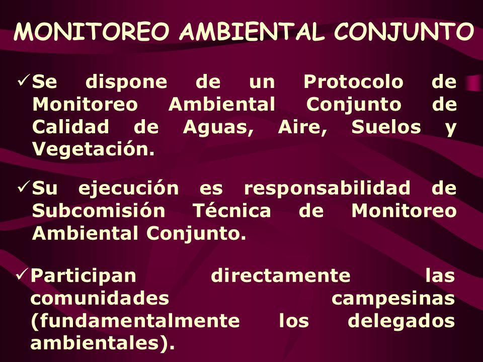MONITOREO AMBIENTAL CONJUNTO