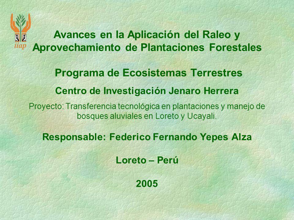 Avances en la Aplicación del Raleo y Aprovechamiento de Plantaciones Forestales Programa de Ecosistemas Terrestres Centro de Investigación Jenaro Herrera Proyecto: Transferencia tecnológica en plantaciones y manejo de bosques aluviales en Loreto y Ucayali.