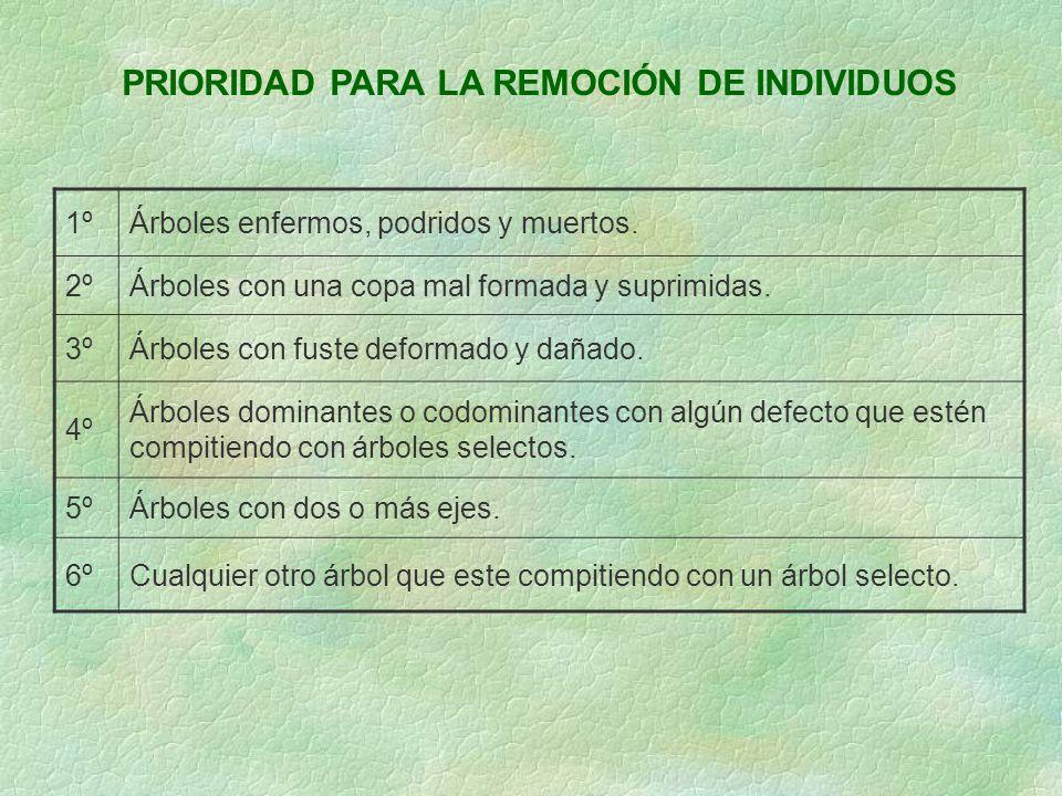 PRIORIDAD PARA LA REMOCIÓN DE INDIVIDUOS