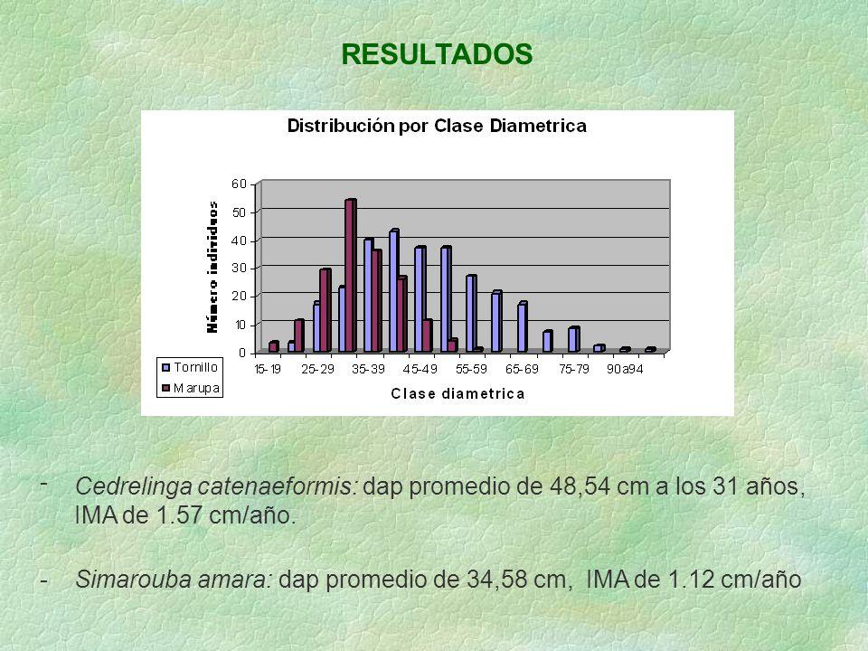 RESULTADOS - Cedrelinga catenaeformis: dap promedio de 48,54 cm a los 31 años, IMA de 1.57 cm/año.