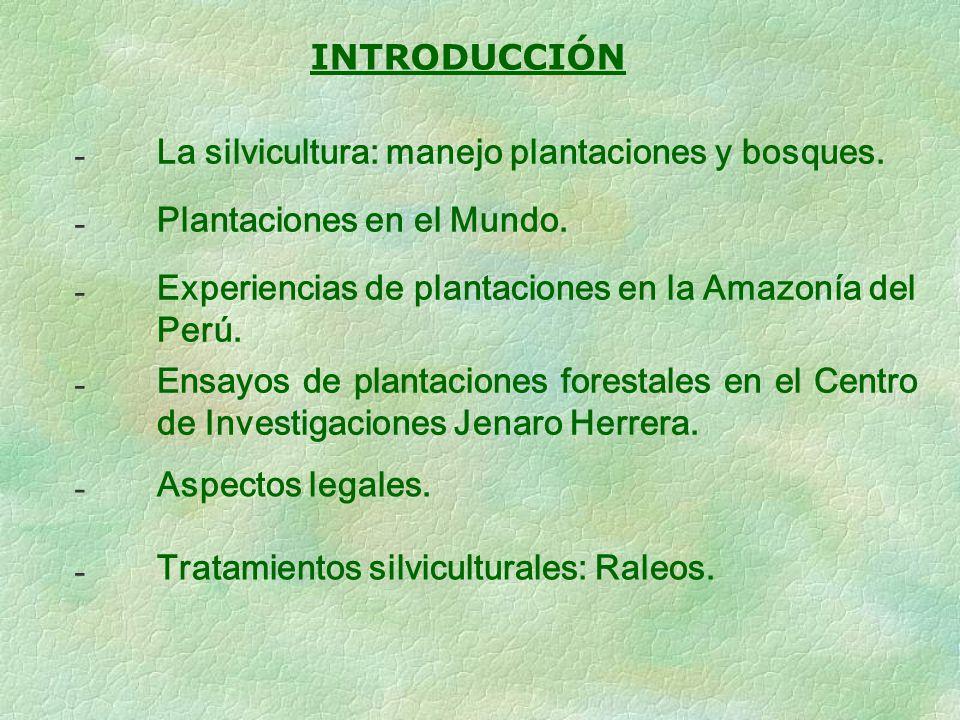 - INTRODUCCIÓN La silvicultura: manejo plantaciones y bosques.