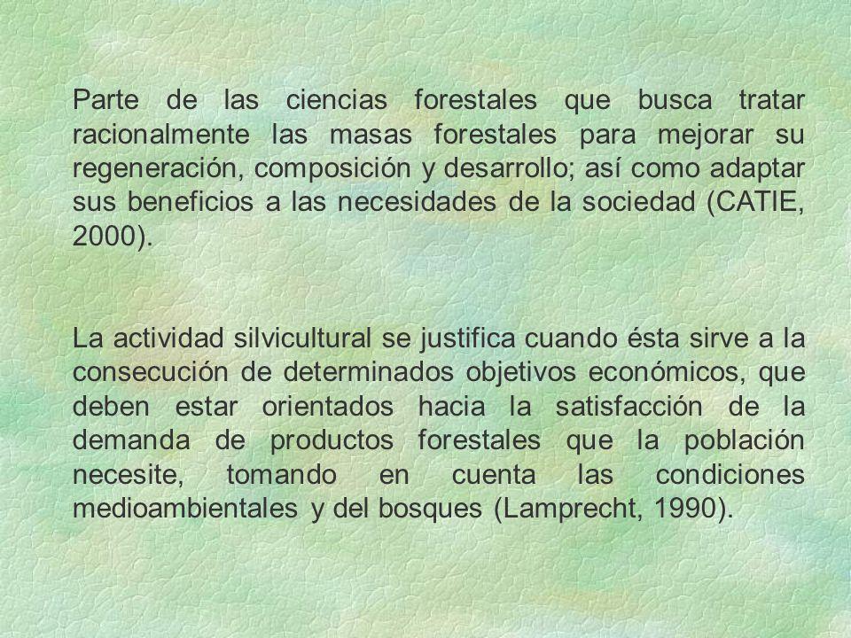 Parte de las ciencias forestales que busca tratar racionalmente las masas forestales para mejorar su regeneración, composición y desarrollo; así como adaptar sus beneficios a las necesidades de la sociedad (CATIE, 2000).