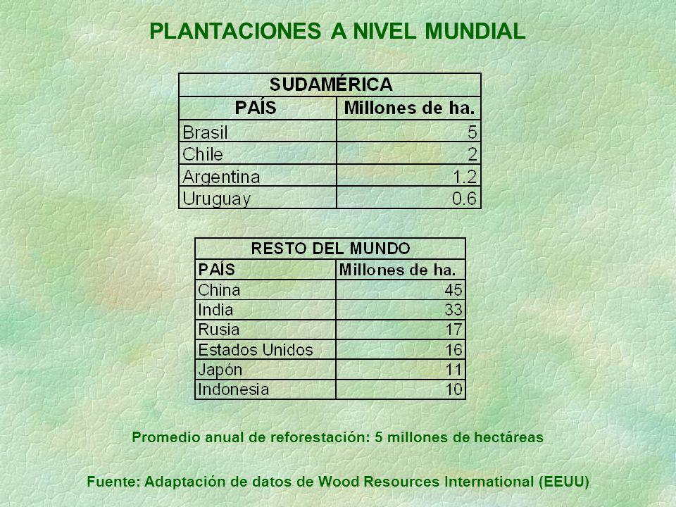 PLANTACIONES A NIVEL MUNDIAL