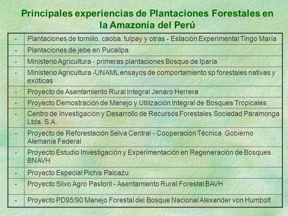 Principales experiencias de Plantaciones Forestales en la Amazonía del Perú