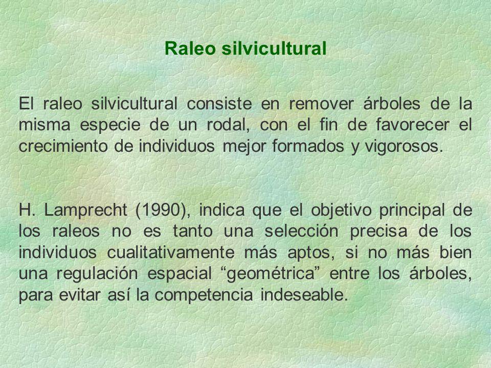 Raleo silvicultural